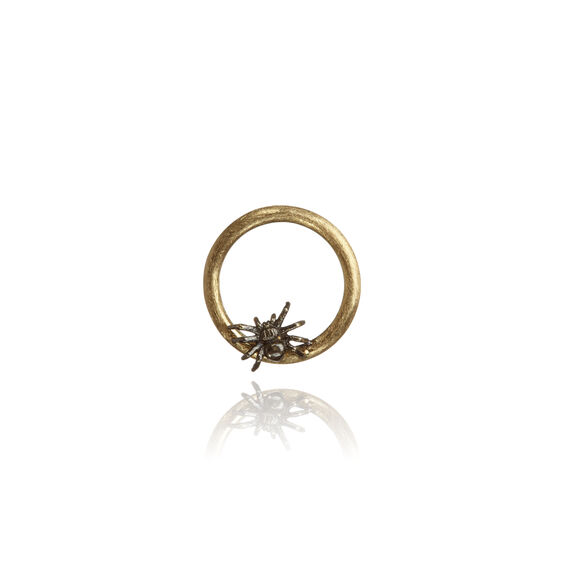18ct Gold Spider Hoopla