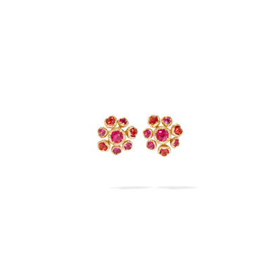 Hidden Reef 18ct Gold Sapphire Stud Earrings