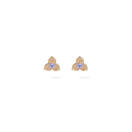 Tokens 14ct Gold Tanzanite Studs | Annoushka jewelley