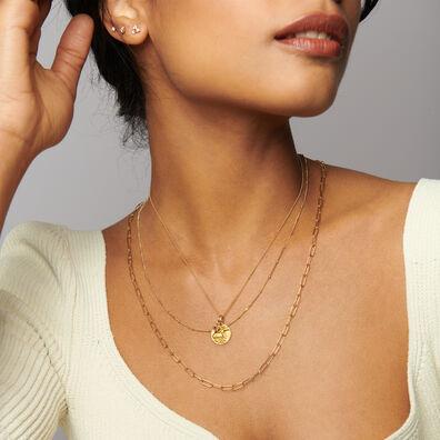 Gold Capricorn & Garnet January Birthstone Necklace